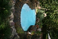 Cocoa Beach Fiberglass Pool in Supply, NC